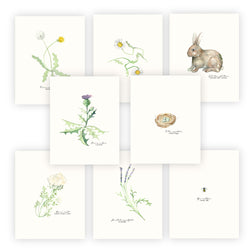 Finch & Poppy Field Notes Print Collection