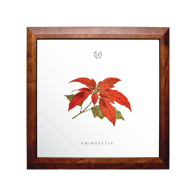 Holiday Botanical Prints