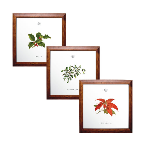 Holiday Botanical Print Set