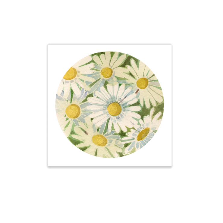 Adam Trest Tiny Art | Daisies Print