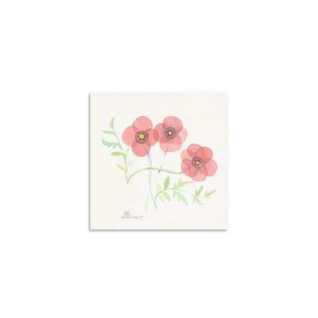 Adam Trest Tiny Art | Poppy Print
