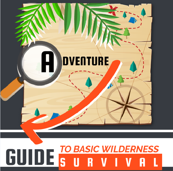 Guide to Basic Wilderness Survival - Infographic