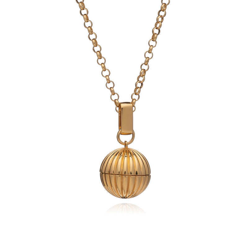 Gold Long Momento Locket Necklace