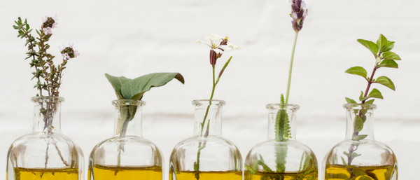 How Do Aromatherapy and Essential Oils Benefit Your Body?