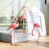 Pink Flamingo Home Decor - 3Pcs