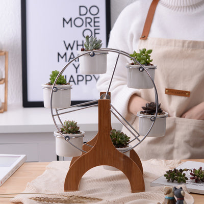 Ferris Wheel Succulent Planter Set