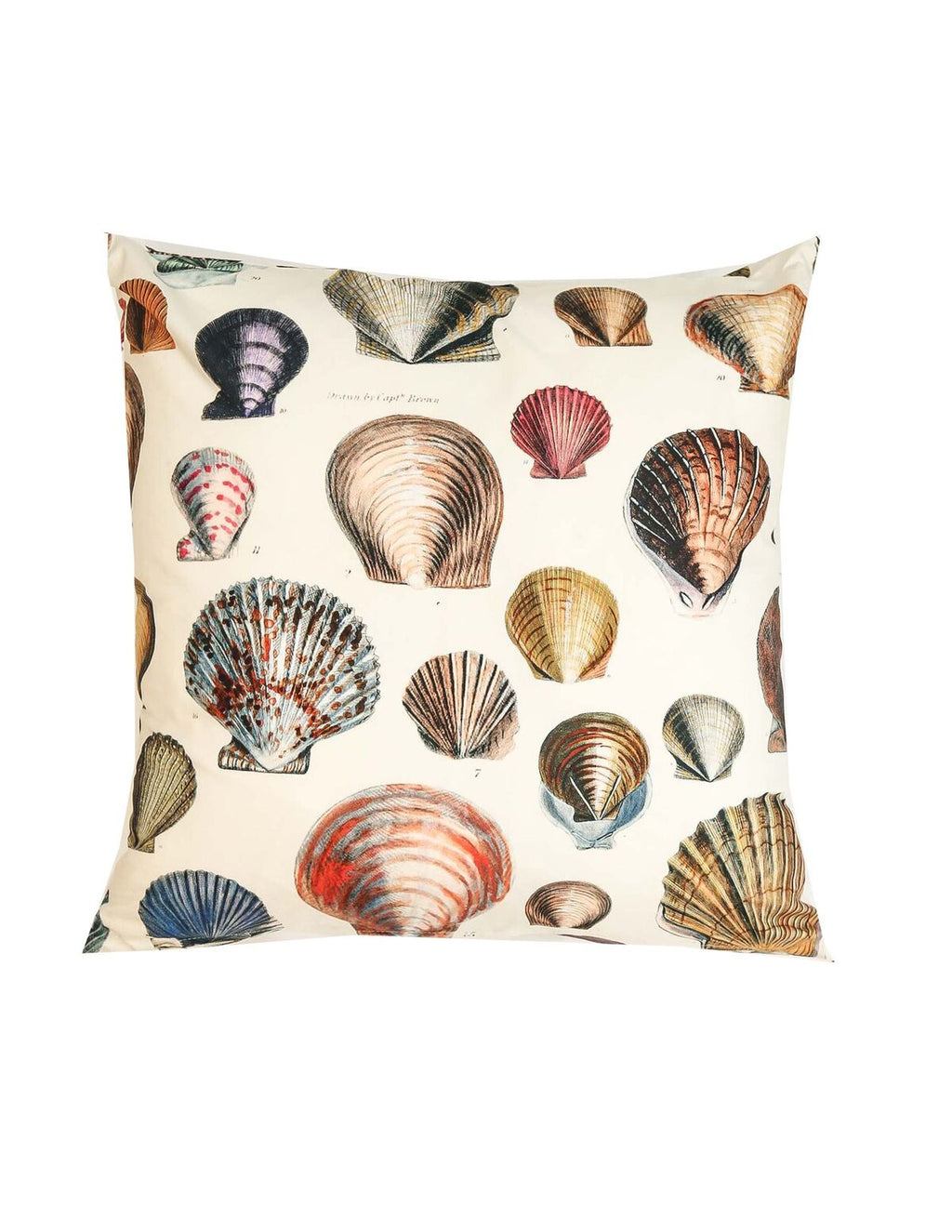 Signature Shell Cushion