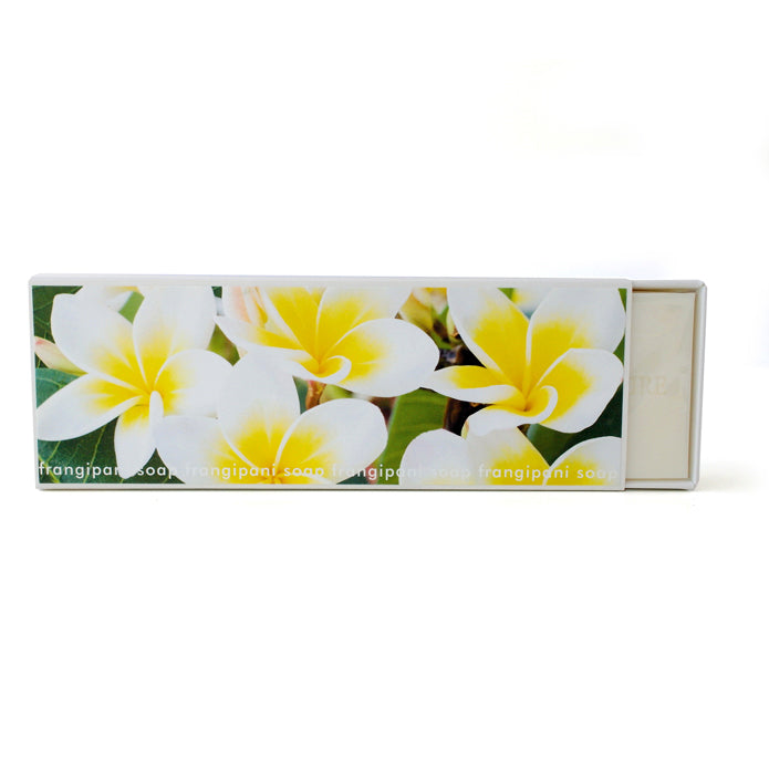 Signature Boxed Soap - Frangipani Design #2