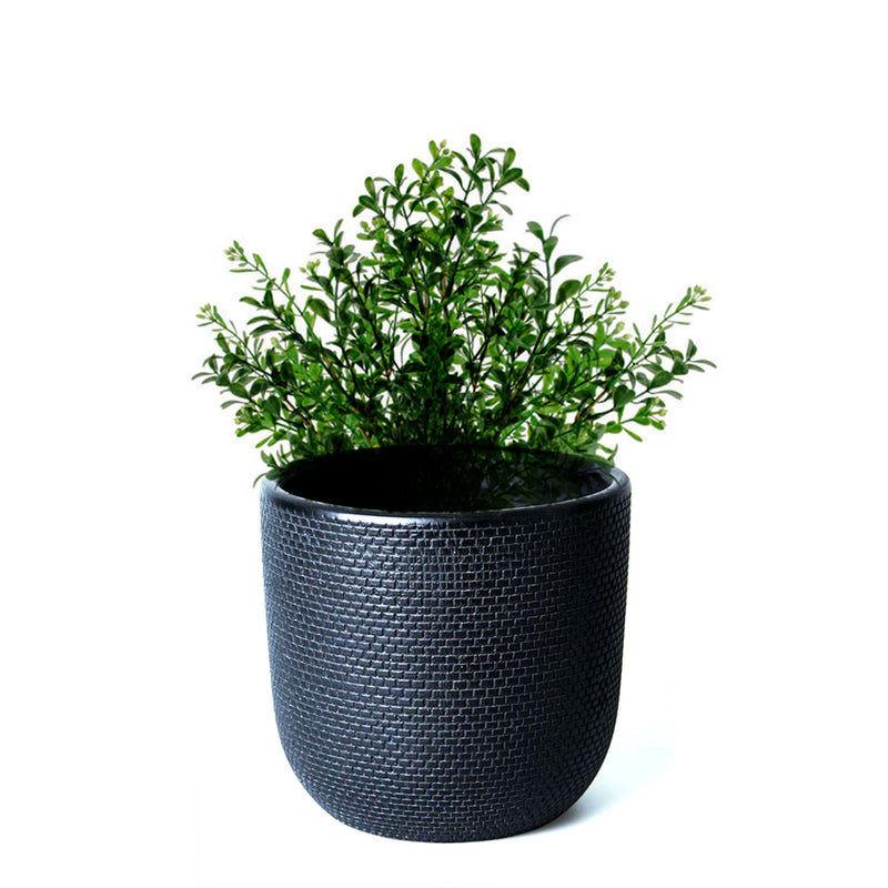 Pot with  Plant - Black