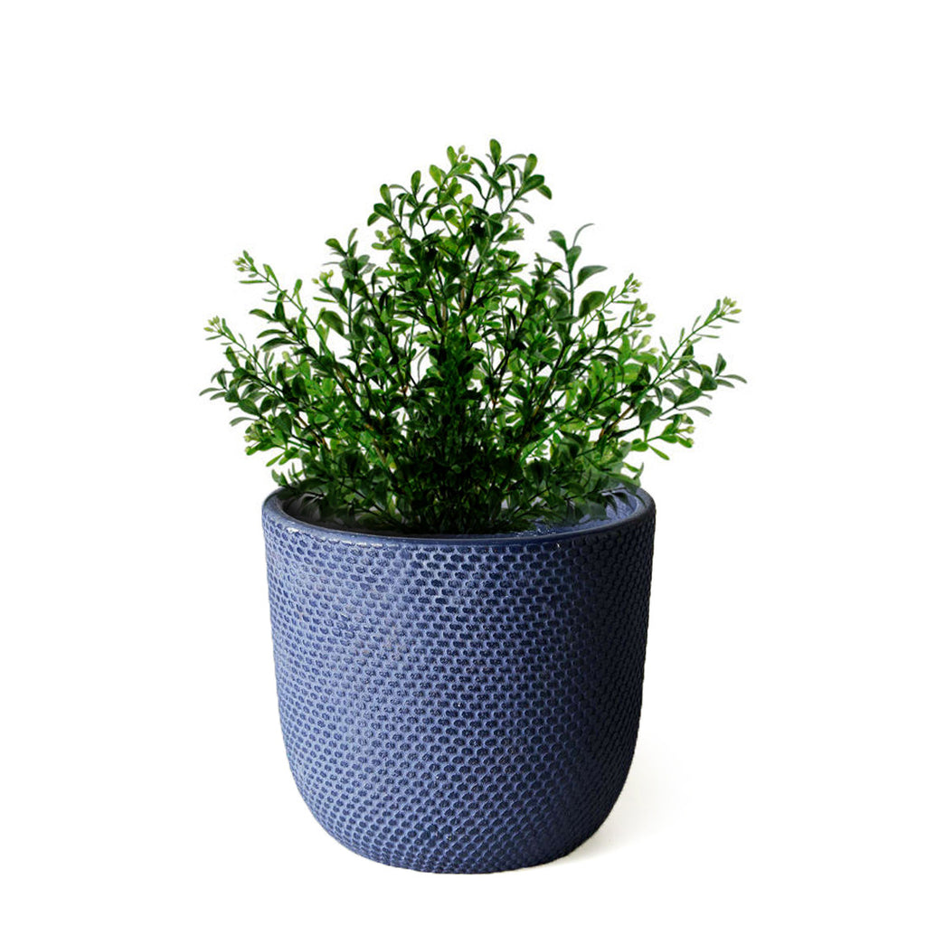 Pot with  Plant - Navy