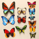 wall decor - Fashion accessories ,clothing, jewelry, 12 Pcs/Lot PVC 3D DIY Butterfly Wall Stickers Home Decor Poster for Kitchen Bathroom Fridge Adhesive to Wall Decals Decoration - clothing, Gorgeous things online - gorgeous things online
