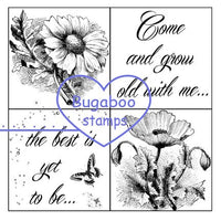 Digi Singles,Word art/ Sentiments, 4 square - Grow old with me,Bugaboo Stamps,