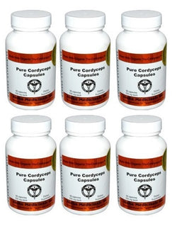 Certified Organic Cordyceps Synensis Supports Immunity 525mg 6 Bottles of 90Caps, Aloha Medicinals - Wholesome Dynamics