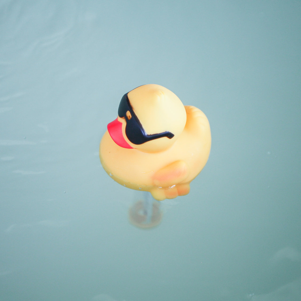 Floating Duck Thermometer – Evergreen Softub