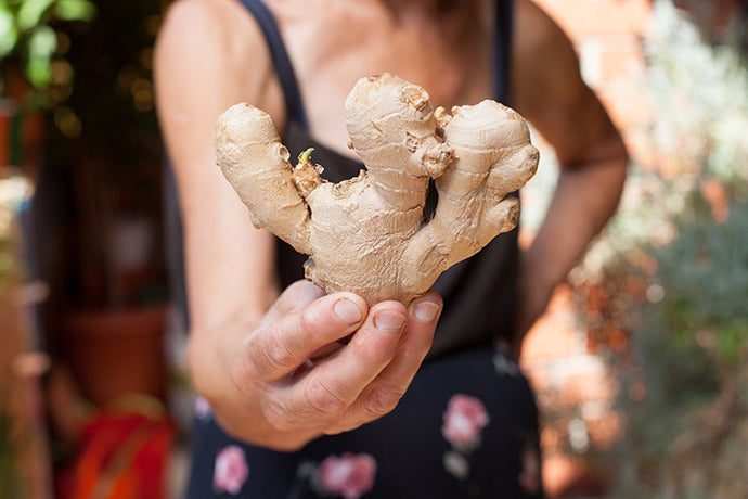 The Powerful, Restorative Properties of Ginger Root