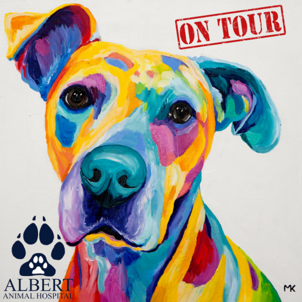 Paint, Sip & Nibble ON TOUR @Albert Animal Hospital - 21 July 2019