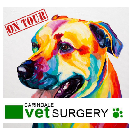 Paint, Sip & Nibble ON TOUR @ Carindale Vets Surgery - 21 October 2018