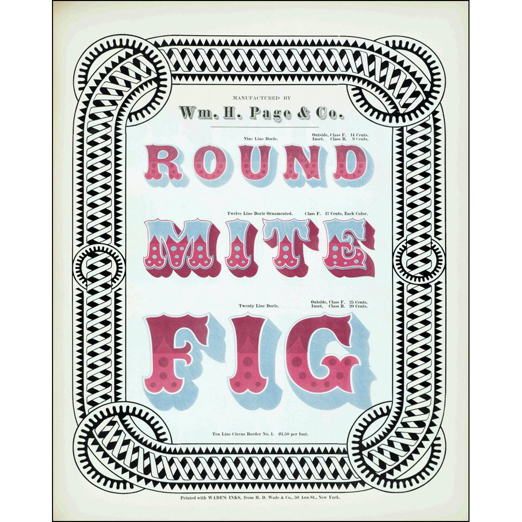 Round Mite Fig, William H. Page & Co., Poster