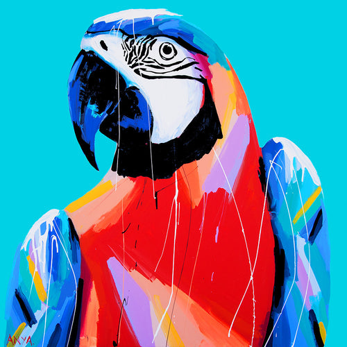 Anya Brock bright macaw artwork