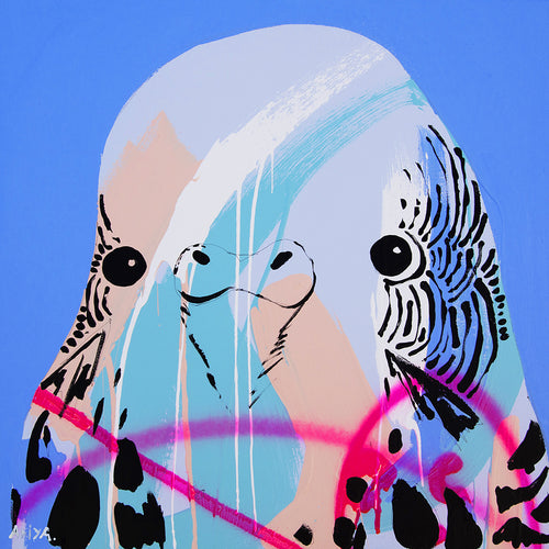'Budgie Two' CANVAS PRINT