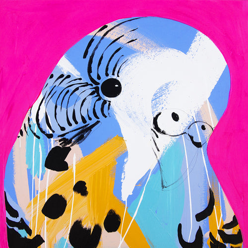 'Hot Pink Budgie' CANVAS PRINT