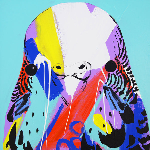 'Spearmint Budgie' CANVAS PRINT