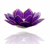 Chakra Lotus Flower Tea Light Holder - Capiz Shell - 7th Chakra