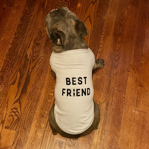 Best Friend - Dog Shirt - Henry & Penny Treats