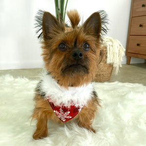 Holiday Plaid Snowflake Pet Bandana Box
