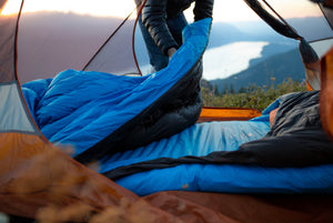 Which Zenbivy Bed is Right for You?