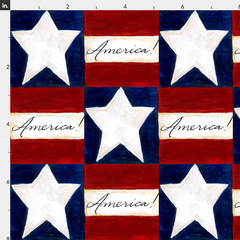 America stars and stripes fabric Spoonflower Caitlin Dundon