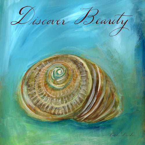 Dreamy Shells I - Discover Beauty Nautilus Print