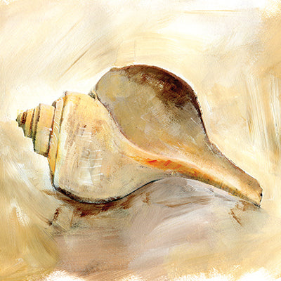 Painted Seashells III Print