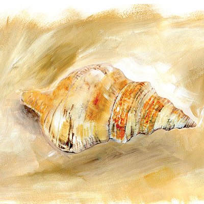 Painted Seashells IV Print