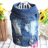 Denim Puppy Clothes for Dog