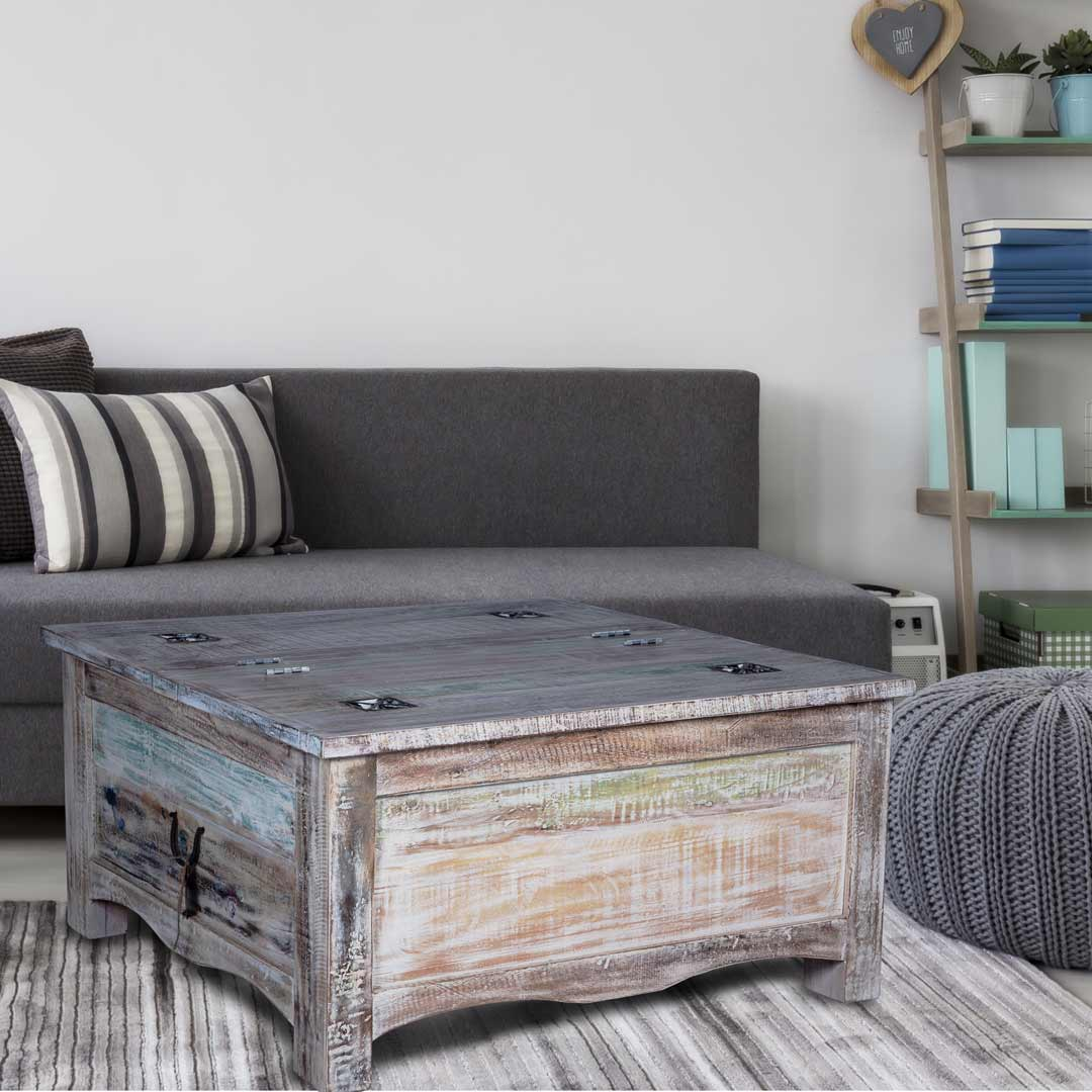Maadze Storage Trunk Coffee Table Winter