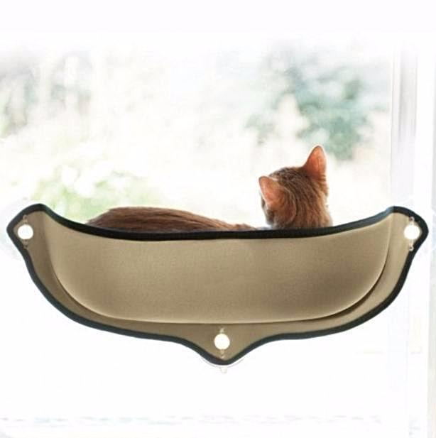 Cool Cat Window Bed