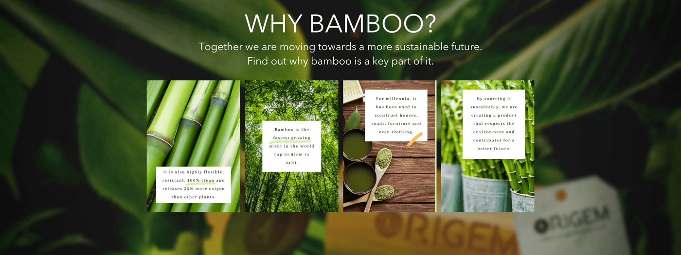 https://cdn.shopify.com/s/files/1/1801/4859/files/Copy_of_Copy_of_Copy_of_Copy_of_Copy_of_After_4-5_years_our_bamboo_is_harvested_from_sustainable_far_1_ae5d0ad9-eaa5-40b7-a246-ad7008b56e7e.png?v=1603555467