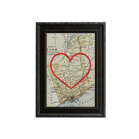York County Heart Map