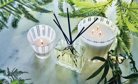 Nest Candles and Fragrances