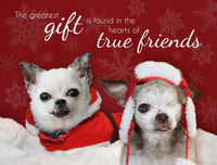 "Holiday Cards - Harley & Teddy ""Friends"" (set of 6)"