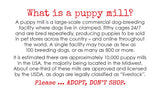Puppy Mill Awareness Cards - Harley (200 pk)