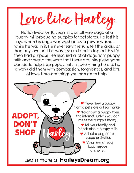 Awareness Flyers - Love Like Harley (50 pack)