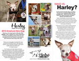 Who is Harley? - (50 pk) Tri-Fold Brochure