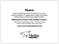 Holiday Cards - Peace (set of 6)