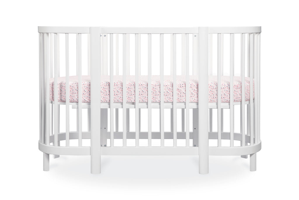 T8037,In Bloom Oval Fitted Crib Sheet