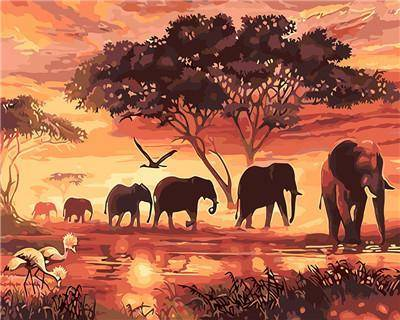 Elephant Paint By Number DIY For Sale