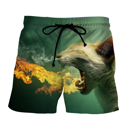 Super Angry Cat Flame Burning Unique Style Dope Shorts