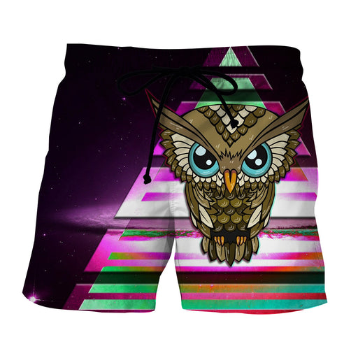 Owl Cartoon Drawing Sharp Eyes Art Design Shorts