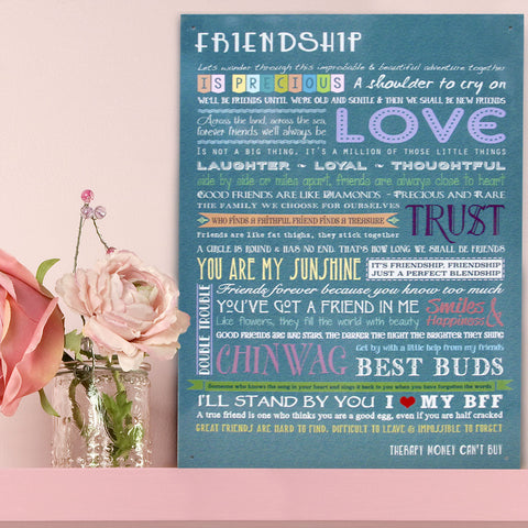 The Rules of Friendship Metal Sign - The Metal Sign Store